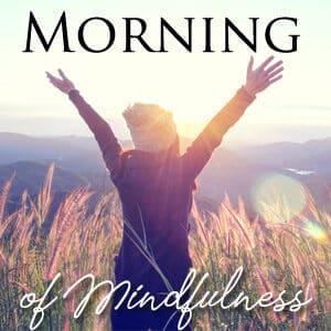 suaimhneas morning of mindfulness cork online